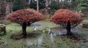 Jardins de Bouknadel