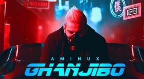 aminux cover
