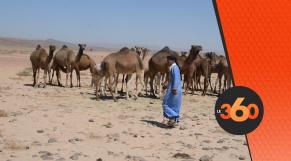 cover vidéo:Le360.ma •سكان آسا الزاك مستعدون لمواجهة استفزازات البوليساريو
