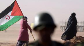 Polisario Hezbollah