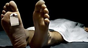 Cadavre Morgue