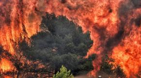 Incendie en Grèce