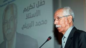 Mohamed E Brini
