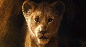 Teaser Roi Lion
