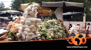 Vidéo. Voici pourquoi les Maliens sont si friands des plantes médicinales
