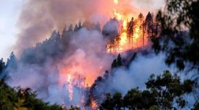 Grande Canarie incendie