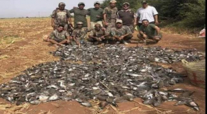 Marrakech chasse