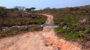 Angola: en plein pays équatorial, la sécheresse menace des milliers d'éleveurs