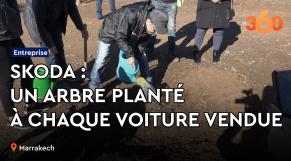 Cover-Vidéo. Skoda: pour chaque voiture vendu, un arbre planté