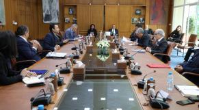 Comité de veille économique