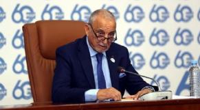 Mohamed Berrada Sapress