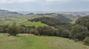 Azrou - Plateau basaltique -