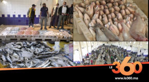 cover: هكذا تخلص سوق الجملة للسمك بالدارالبيضاء من فيروس كورونا