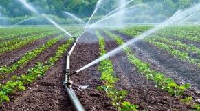 Irrigation Chtouka Massa