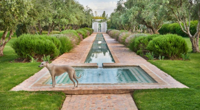 Inside Marrakesh: Enchanting Homes and Gardens