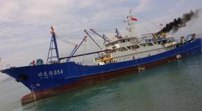 Sénégal. pillage organisé des ressources halieutiques: Greenpeace accuse, le ministère dément