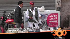 """Cover_Vidéo: مولات الحوت"""" تجوب شوارع أكادير الكبير لضمان قوت يومها"""""""