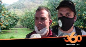 """Cover. مغاربة يتّجهون إلى فرنسا لإنقاذ """"كليمونتين"""" كورسيكا"""