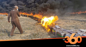 Cover_Vidéo: إتلاف 50 طن من الحشيش بضواحي طنجة