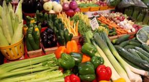 Légumes - Agriculture biologique