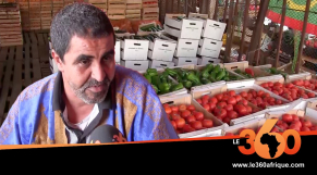 Mauritanie: les camions passés par Guerguerat arrivent en nombre à Nouakchott
