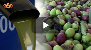 Cover_Vidéo: Bon comportement de la filière huile d'olive à Ben-Mellal