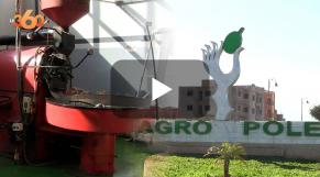 cover: Mesures incitatives pour l'essor de l'Agropôle de Béni-Mellal