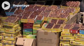 cover vidéo :Dattes: les variété marocaines appréciées par les Marrakchis