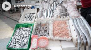 Cover vidéo - Prix du poisson - Coût de la vie - Prix - Consommation