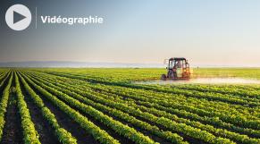 Cover : Vidéographie. La campagne agricole 2020-2021 en dix chiffres