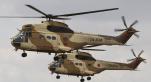 Hélicoptères FAR, armée Maroc