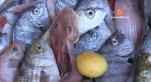 Cover Video - Le360.ma • A essaouira attention ou vous mangez votre poisson