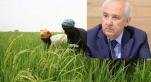 Sénégal: levée de bouclier contre Sefrioui attributaire de 10.000 ha de terres agricoles