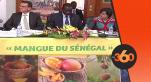 Vidéo. Sénégal: le Maroc et l'UE, principales destinations de la mangue