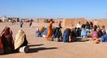 camps de Tindouf