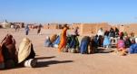Camp de Tindouf