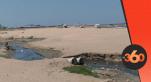 Cover Vidéo -  شاطئ واد مرزك بالدار البيضاء.. من جوهرة زرقاء إلى قنبلة بيئية