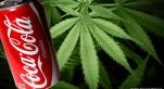 Coca Cannabis
