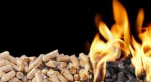 Biomasse Maroc