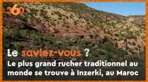 Cover Vidéo - Le saviez-vous #3? Le plus grand rucher traditionnel au monde se trouve à Inzerki, au Maroc
