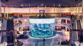 aquarium morocco mall
