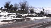 Froid neige