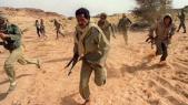 Polisario fuite