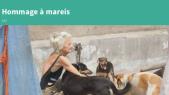 Mareis