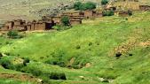 terres collectives