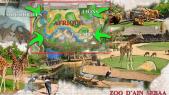 zoo ain sebaa