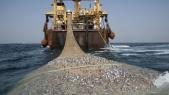 Chalutier eaux mauritaniennes