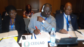 CEDEAO. Suspension du commissaire aux Finances pour détournement de 8 millions de dollars