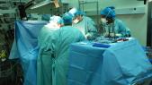 greffe d'organe