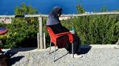 Algérienne cancer du sein